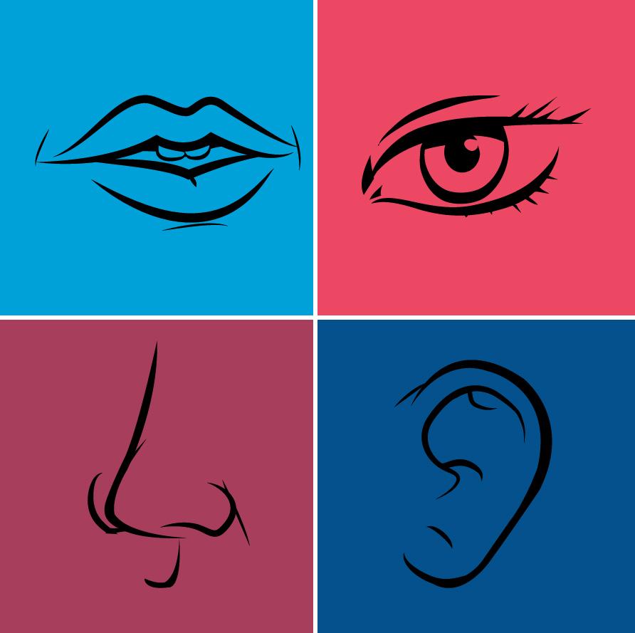Eye Nose Ear Mouth